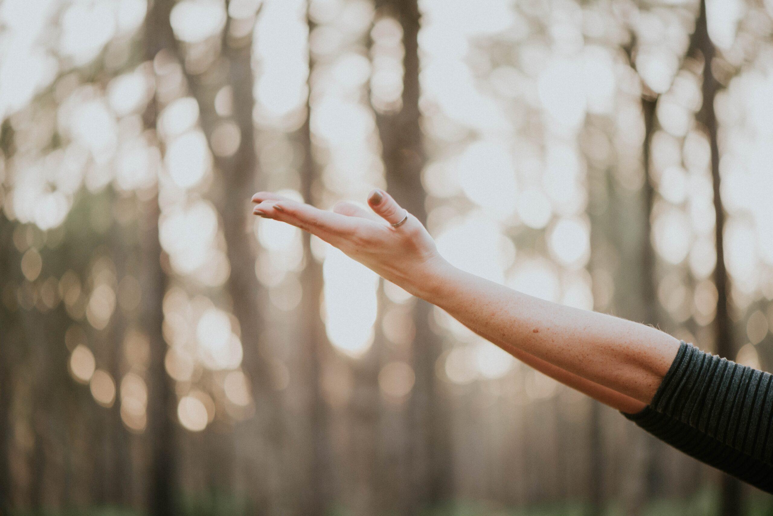 ¡Levante la mano derecha!